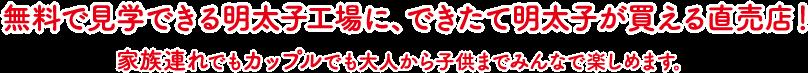 無料で見学できる明太子工場に、できたて明太子が買える直売店!家族連れでもカップルでも大人から子供までみんなで楽しめます。